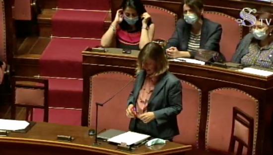 Zoom in Senato. Senatrice Mantovani cita Key4biz in Aula e propone: 'Piattaforme PA siano pubbliche'